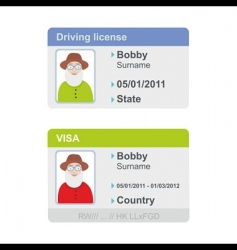 Visa and driving license vector