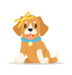 animal pet - cute puppy vector image