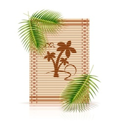 bamboo mat tropic palm vector image vector image