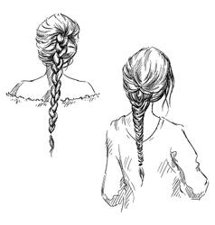 Braids vector