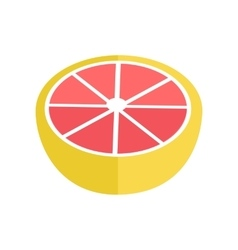 Grapefruit in flat style vector