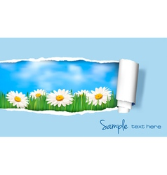 nature floral background vector image