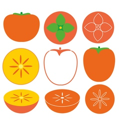 Persimmon vector image vector image