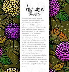 Background with autumn chrysanthemums vector image vector image