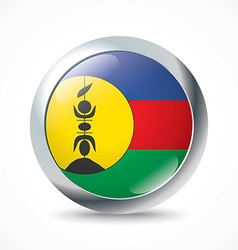 New caledonia flag button vector