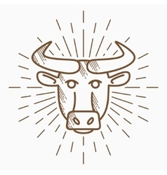 Vintage bull head Hand drawn sketch vector image