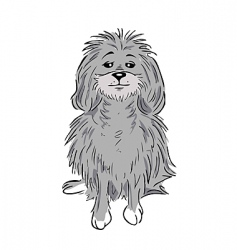 Poodle vector
