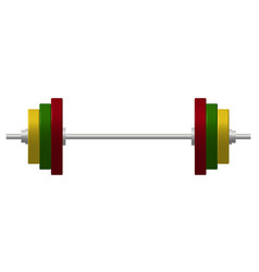 barbell in silver and colourful design vector image vector image