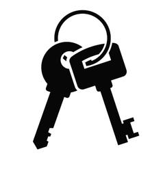 Keys Icon vector image