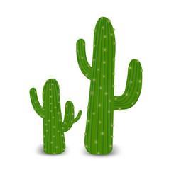 cactus vector image
