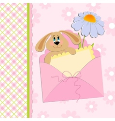 Babys greetings card with rabbit and chamomile vector image