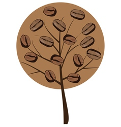 coffee tree vector image vector image