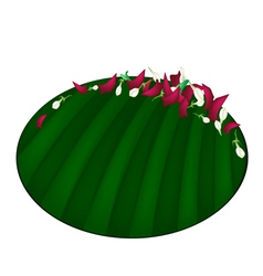 Corolla of roses and jasmines on banana leaf vector