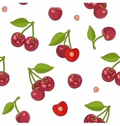 Seamless background with cherries vector