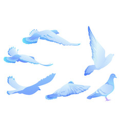 Blue bird pigeon flies set of silhouettes vector