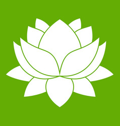 water lily flower icon green vector image