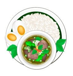 Thai Green Curry with Cooked Jasmine Rice vector image