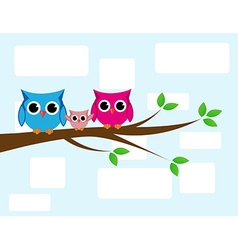 Cute owls couple with baby owl vector