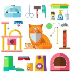 Cat accessory icons vector image
