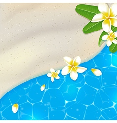 Sandy beach and blue sea water vector