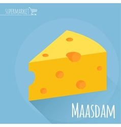 Flat design Maasdam cheese icon vector image vector image