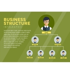 Business structure infographic tree infographic vector