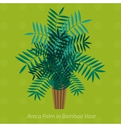 Africa plants palm trees flowers and green grass vector