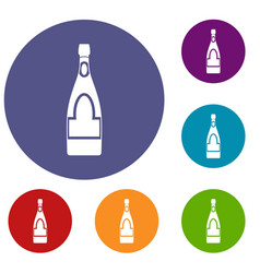 champagne bottle icons set vector image