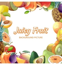 Fruit abstract background vector image