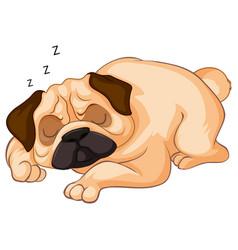 Little dog sleeping on white background vector