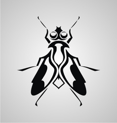 Tribal fly vector