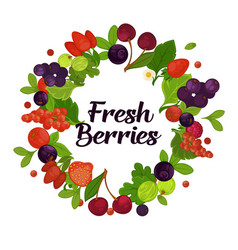 fresh organic berries with leaves in circle vector image vector image