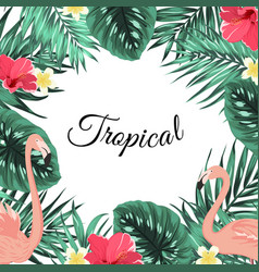 tropical jungle palm leaves flamingo flowers frame vector image