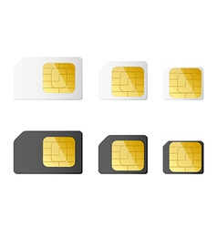 Mini micro nano sim cards in black and white color vector