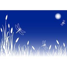 Foggy marsh with dragonflies vector