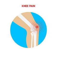 Knee pain knee pain icon isolated on white vector