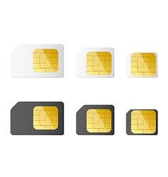 Mini micro nano sim cards in black and white color vector