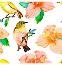Tropical birds and flowers white-eye bird and vector