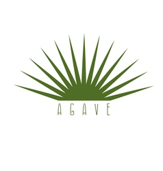 design template of the agave plant vector image