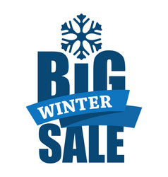 big winter sale inscription vector image