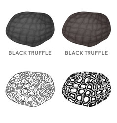 Black truffles icon in cartoon style isolated on vector