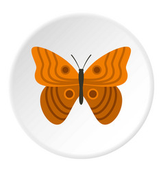 Butterfly with ornament icon circle vector