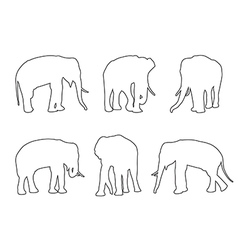 Elephant set path on the white background vector