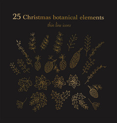 set of 25 christmas botanical symbols vector image