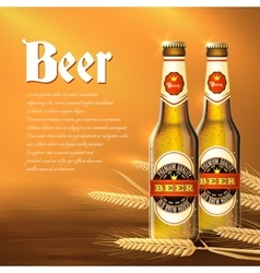 Beer bottle background vector