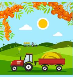 autumn harvest field meadow with tractors hills vector image vector image