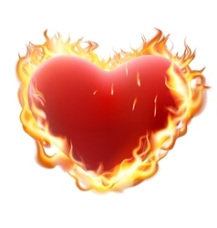Heart in flame isolated on white EPS 10 vector image