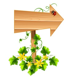 Wooden arrow with ladybug and vine vector image vector image