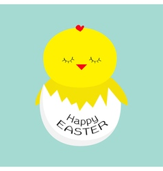 Easter sleeping chiken egg shell baby background vector