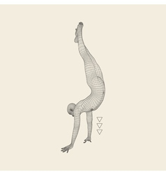 Gymnast 3D Model of Man Human Body Model vector image vector image
